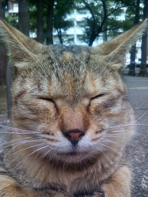 higashiikebukuro-park201509019